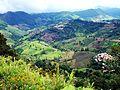 Green mountains Ban Ho Mae Salong.jpg