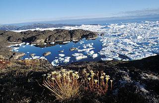 Isfjord, Ilulissat, Diskobay, West Greenland von Michael Haferkamp