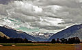 Grey Valley, Westland, New Zealand, 1976.jpg