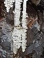 Grotte de Clamouse 155207.jpg