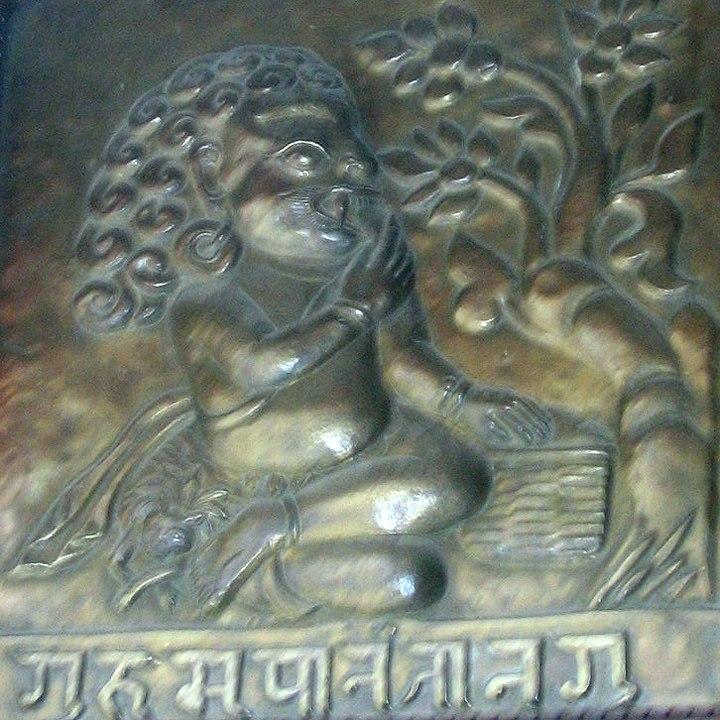Gurumapa eating rice