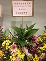 HKCL CWB 香港中央圖書館 Hong Kong Central Library 展覽廳 Exhibition Gallery 國際攝影沙龍展 PSEA flowers sign Oct 2016 SSG 05.jpg