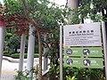 HK 中環 Central 天橋 footbridge n 琳寶徑休憩公園 Lambeth Walk Rest Garden August 2019 SSG 04.jpg