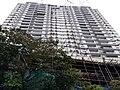 HK ML 半山區 Mid-levels 寶雲道 Bowen Road February 2020 SS2 32.jpg