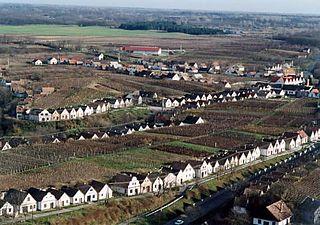 Duna wine region