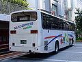 Hanshin-saladexp-550-rear-20071001.jpg