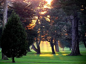 TPC Harding Park - Harding Park Golf Course, winter 2006