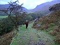 Harter Fell Path - geograph.org.uk - 1006393.jpg