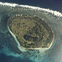 Hatoma jima 1977 cok-77-5 c1 2.jpg