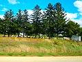 Hauge Cemetery - panoramio.jpg
