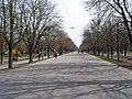 Hauptallee - panoramio.jpg