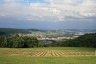 Heitersberg Blick Limmattal 055.jpg