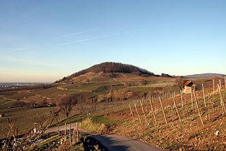 Hessische Bergstraße - Vineyards around Bensheim.