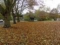 Herne im November 2009, das Laub fällt und bleibt - panoramio (2).jpg