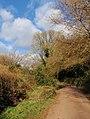 Higher Ramshill Lane - geograph.org.uk - 1184391.jpg