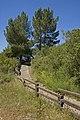 Hillside trail (4596269585).jpg