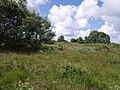 Hollow Moor - geograph.org.uk - 494944.jpg