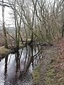 Holmsley, Avon Water - geograph.org.uk - 1139643.jpg