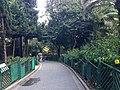 Hong Kong Zoological and Botanical Gardens 23.jpg