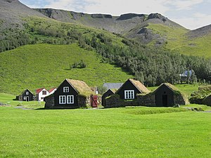 houses with grass on the roof, iceland
