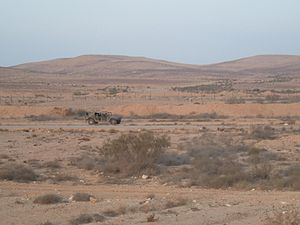 Egypt–Israel barrier - Old Israel–Egypt border fence near Nitzana.