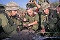 IDF Paratroopers UNIT. XX.jpg