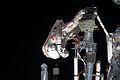 ISS-32 Russian EVA 8.jpg