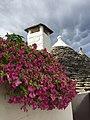 I trulli di Alberobello.jpg