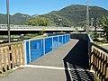 Il Ponte della Passerella - panoramio.jpg