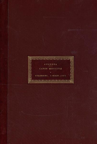 File:Illuminated Leaf from Avicenna's Canon of Medicine WDL3886.pdf