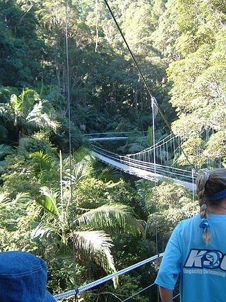 """I'm a Celebrity...Get Me Out of Here! (UK TV series) - On location in the """"Jungle"""" in Dungay, north-eastern New South Wales"""