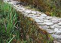 Inca trail, Peru.jpg