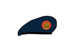 Infantry brigadier Beret - Egyptian Army.png