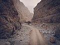 Into the Rocks.jpg