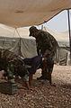 Iraqi Police's Emergency Response Unit DVIDS52530.jpg