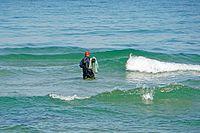 Israel-04546 - Here Fishy.... (33662998835).jpg
