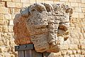 Israel-04826 - Cat Head (33283318250).jpg