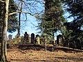 Jüdischer Friedhof für Altenstadt und Illereichen - panoramio.jpg