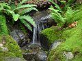 Japanese Garden (15860047917).jpg
