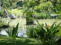 Japanese Gardens. Buenos Aires - Flickr - gailhampshire.jpg