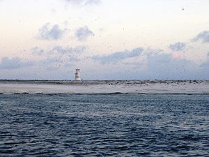 Jarvis Island - Jarvis Island Light in 2003