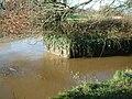 Jetty Marsh, Newton Abbot - geograph.org.uk - 418677.jpg