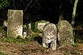 Jewish cemetery Otwock Karczew Anielin IMGP6733.jpg