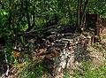 Jewish cemetery Radosc 4.jpg
