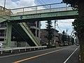 KANAGAWA 505 Hashimoto.jpg