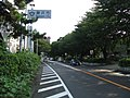 Kanagawa Route 30 -01.jpg