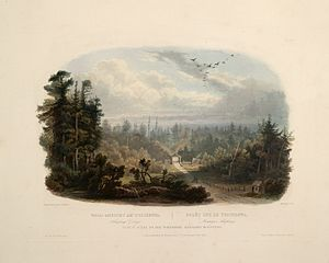 """Tobyhanna, Pennsylvania - Forest scene on the Tobihanna, Alleghany Mountains (circa 1832): aquatint by Karl Bodmer from the book """"Maximilian, Prince of Wied's Travels in the Interior of North America, during the years 1832–1834"""""""