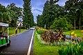 Kebun Raya Bogor 22.jpg
