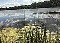 Keller Lake - Maplewood, MN - panoramio (4).jpg