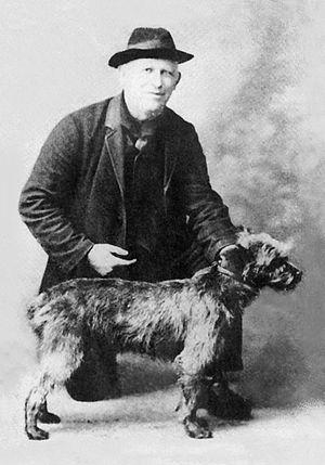 Kerry Blue Terrier - Image: Kerry Blue Terrier 1916